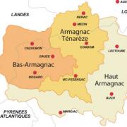 Armagnacs spiritueux