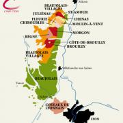 Beaujolais vin