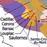 Bordeaux moelleux vins